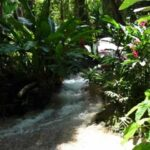 Enchanted Gardens Jamaica Tours-2