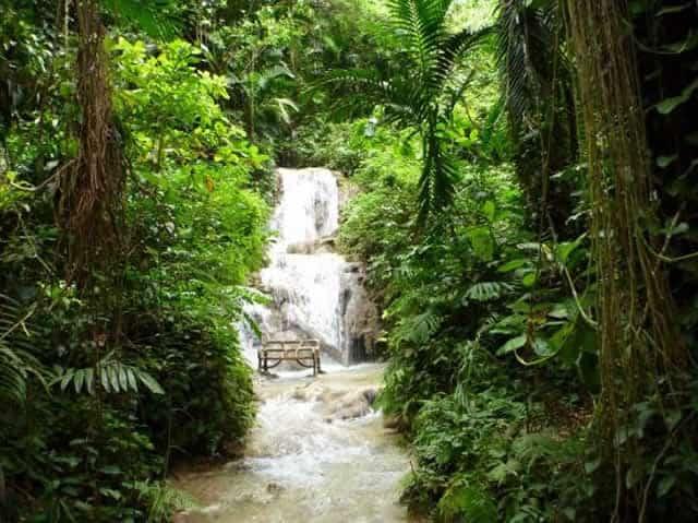 The Enchanted Gardens Jamaica Garden Ftempo