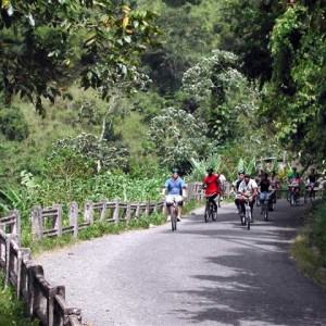 Blue Mountain Bicycle Tour