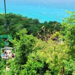 Dunn's River Falls and Bobsled Adventure Ride From Montego Bay
