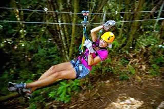 Dunns River Falls And Bobsled Adventure Ride From Montego Bay