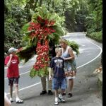 Fern Gully Eco Tour From Montego Bay