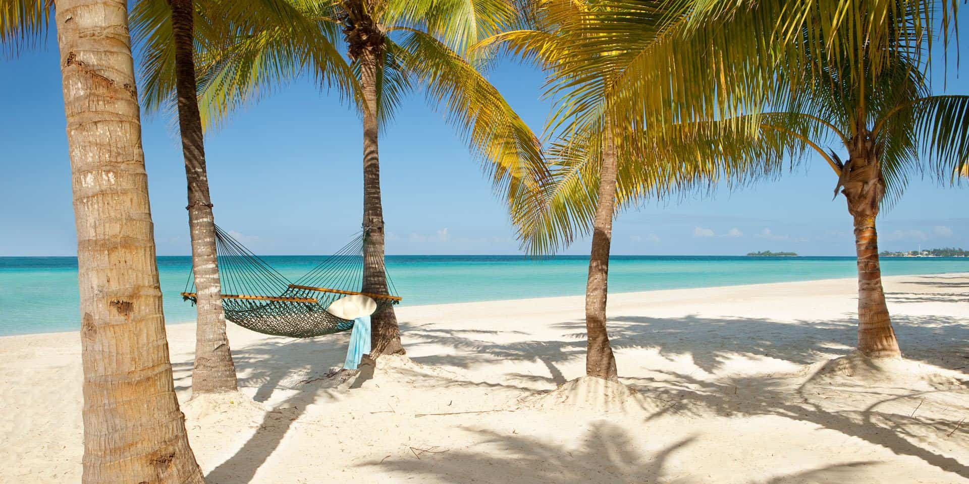 Montego Bay Airport Transfer To Couples Swept Away Montego